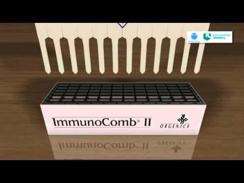 Chlamydia Immunocomb IgA